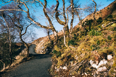 Long Road in Glenveagh National Park