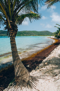 Flamenco Beach Coastline