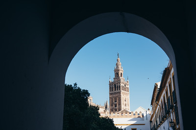 Seville Cathedral from Patio de Banderas II