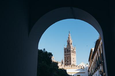 Seville Cathedral from Patio de Banderas II