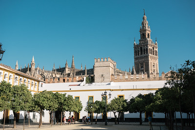 Seville Cathedral from Patio de Banderas