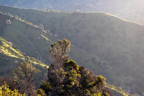 Stebbins Cold Canyon, Winters, California, USA