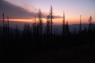 Sunset Over Burned Forest Highway 41 South