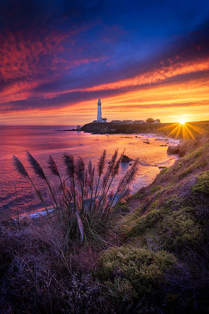 Pigeon Point Pastel