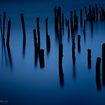 Blue Hour Pilings