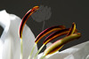 Sing<br /> <br /> Flower pictured :: Asiatic Lily<br /> <br /> Flower provided by :: Babylon Floral<br /> <br /> 123012_007134 ICC sRGB 16in x 24in pic