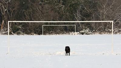 Shadow in goal!