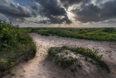 Path to the coast