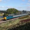 D9009 at Craneshough, Hexham