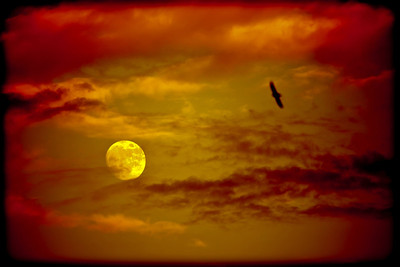Full Moon, Red Sky
