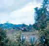 "Medivac ""Dust Off"" Batangas Peninsula"