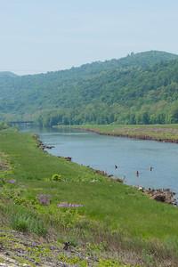Wading the Potomac