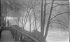#282 Winston & Malcolm Stebbins at Cumberland  Falls State park 27 Dec'51