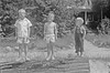 #211 Winston -Malcolm- Kenyon Stebbins at Roaring Brook 16-17 June'51