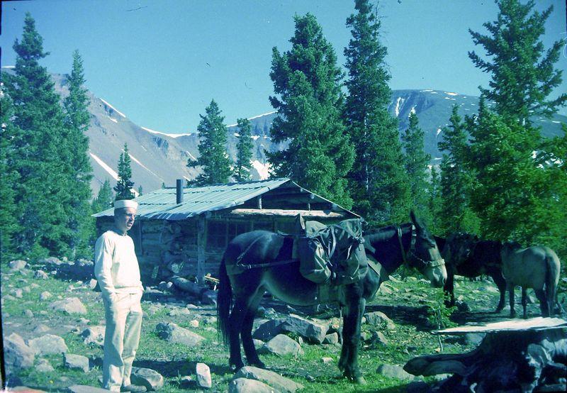#60 Winston Stebbins & horses Kings Peak Utah 8 July'60