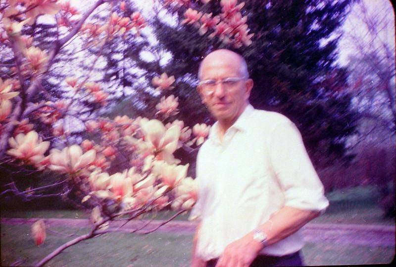 #116 Rowland Stebbins 1710 MRD Tulip Tree June'69