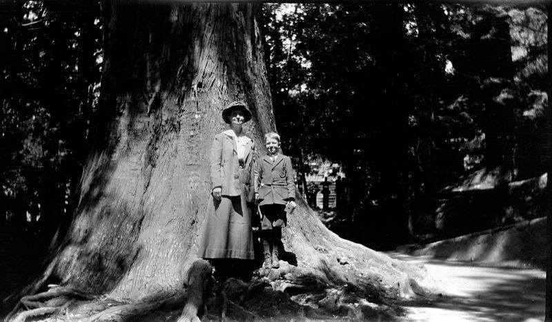 # 71 Mother (Anna B) & George by Big Tree - Japan