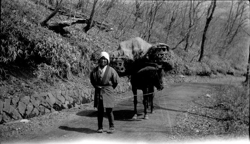 # 60 Peasant women - Japan