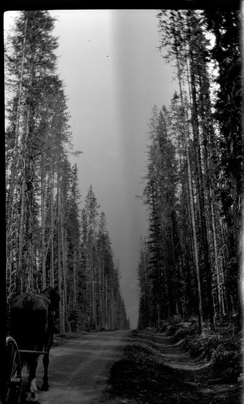 # 179 Canadian Highway