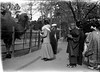 # 53 Mother (Anna B) - Tokio Zoo