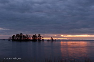 sunrise; lake mattamuskeet