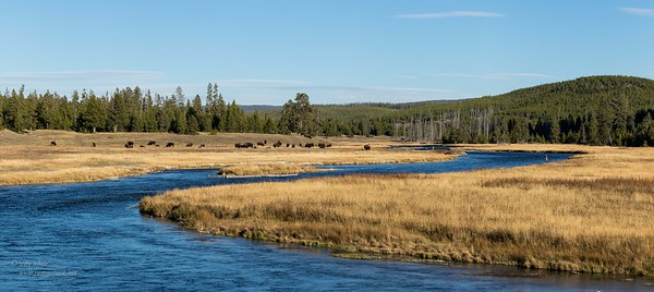 20151012-yellowstone pano 2