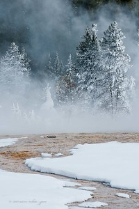 yellowstone winter 2011