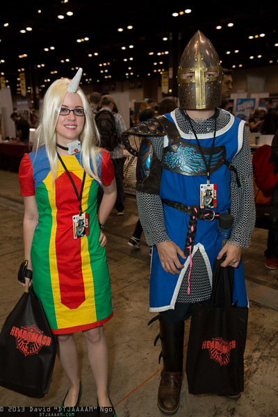Lady Rainicorn and Knight