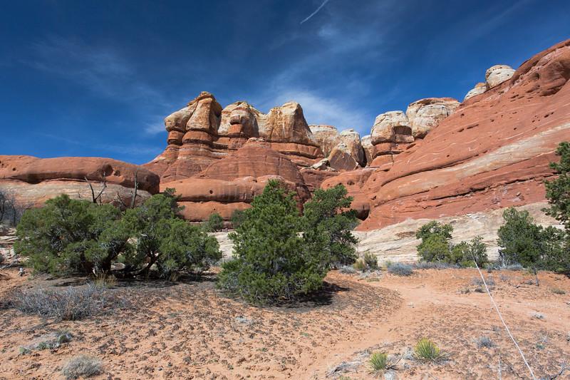 Chesler Park Trail - Canyonlands National Park - Needles District - Utah-6049