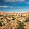 Chesler Park Trail - Canyonlands National Park - Needles District - Utah-6019