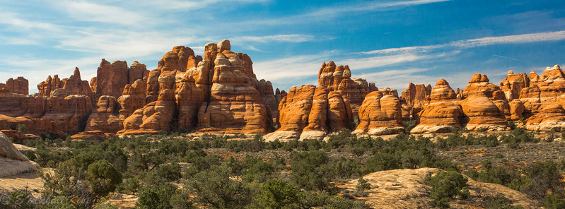 Canyonlands National Park - Needles District -  Chester Park Trail  (FB)-6009