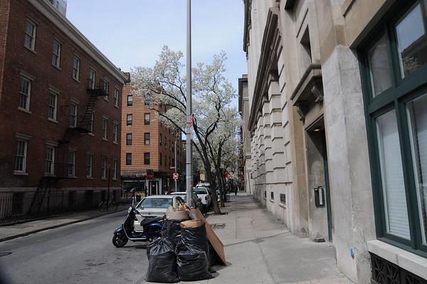 City Streets1