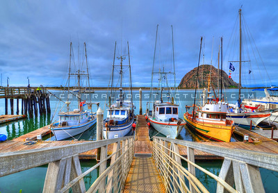 morro bay boats_3723