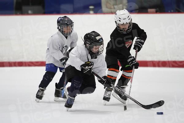 SDIA Oilers vs Poway Predators