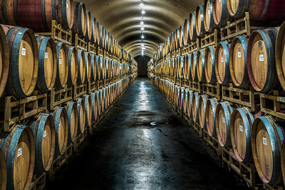 Wine Barrels Resting in a Cave, Napa Valley