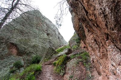 High Peaks Trail - Pinnacle Nationla Park