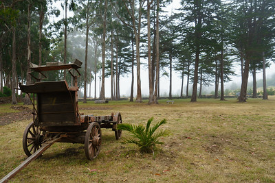 Old Trailer, Spring Ranch
