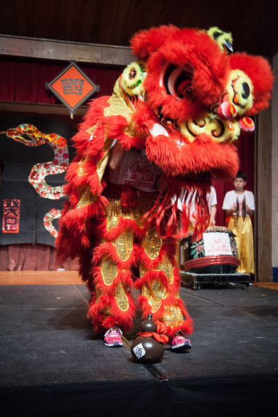 Chinese Festival 20130623-141538