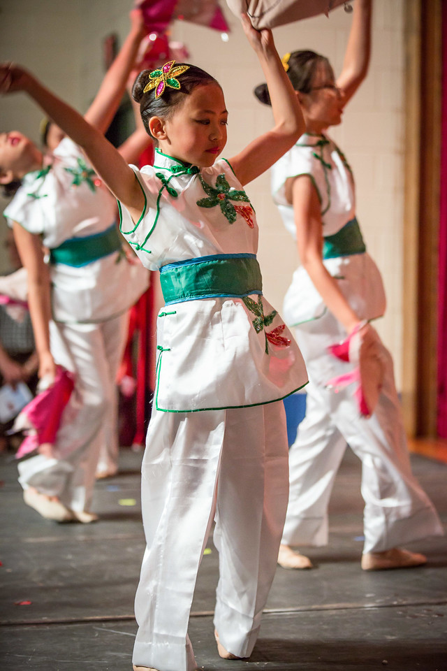 Chinese Festival 20130623-142438