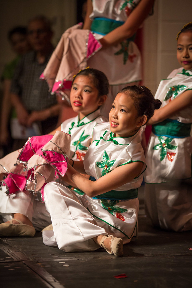 Chinese Festival 20130623-142310