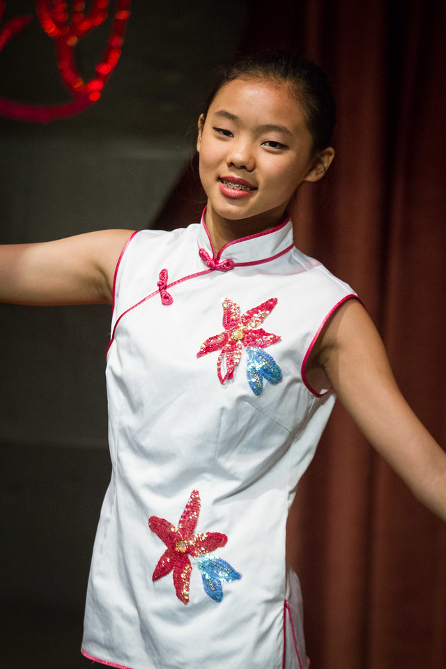 Chinese Festival 20130623-163000