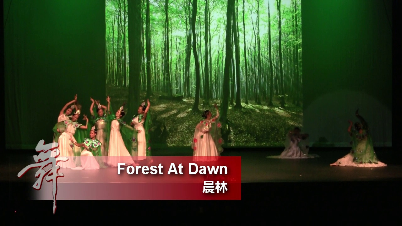 15. Forest At Dawn 《晨林》<br /> <br /> An Enchanted Evening of Dance<br /> CACC & Fairfax Chinese Folk Dance Troupes<br /> 8/20/2011 Fairfax, VA