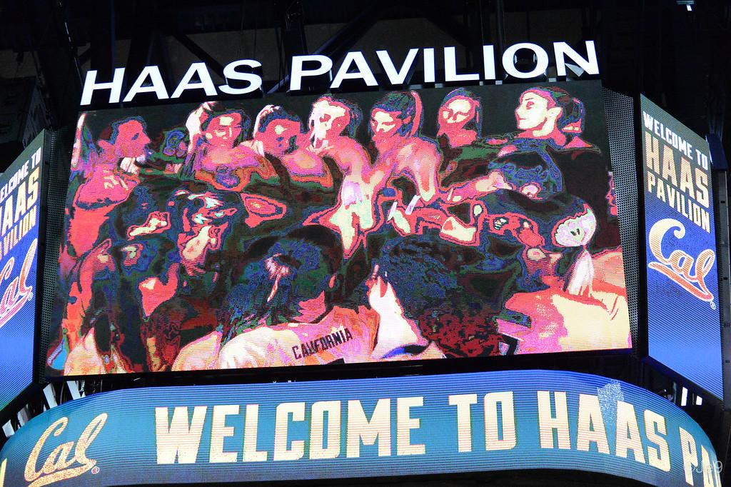 2015-09 Cal VB vs UCLA (Close-ups & Jumbo tron)