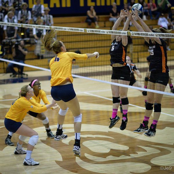 2015-10 Cal VB vs OR State-31