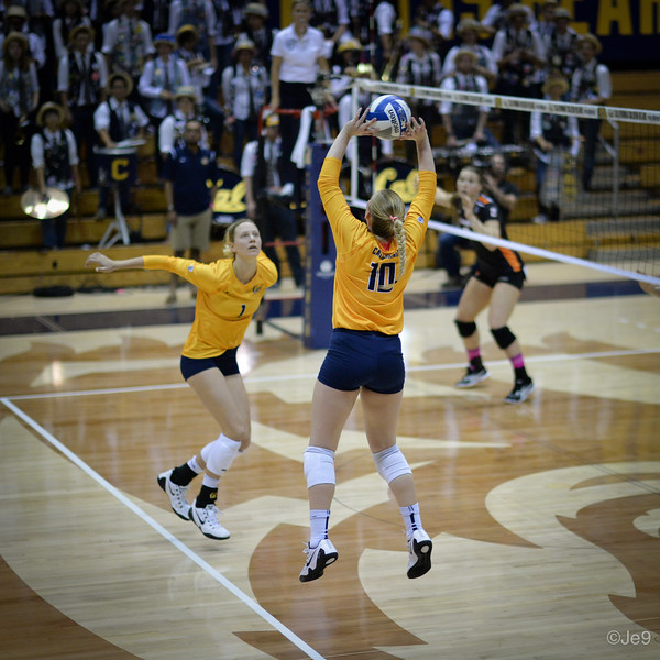 2015-10 Cal VB vs OR State-24