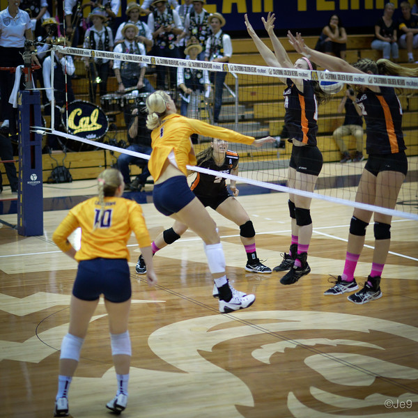 2015-10 Cal VB vs OR State-25