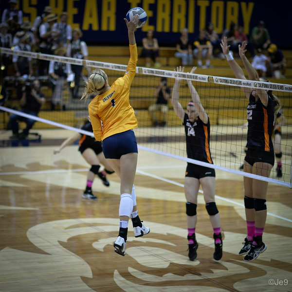 2015-10 Cal VB vs OR State-23
