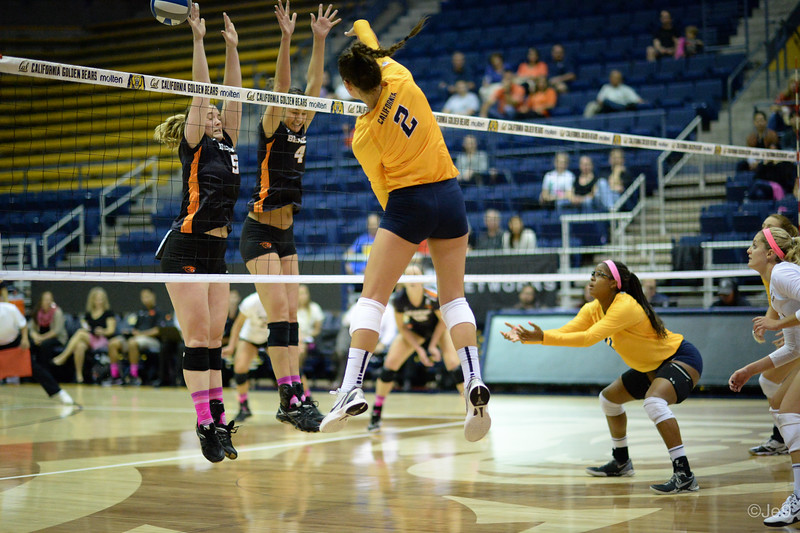 2015-10 Cal VB vs OR State-15