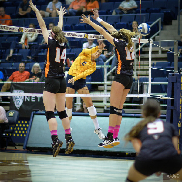 2015-10 Cal VB vs OR State-20