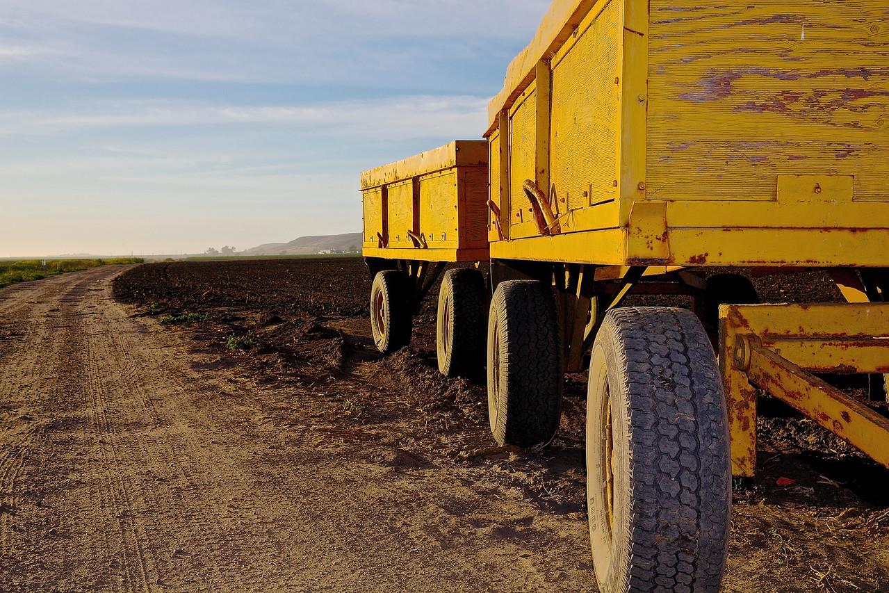 Farm Wagons.  Santa Cruz County
